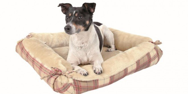 trixie hundebetten testsieger preisvergleiche uvm. Black Bedroom Furniture Sets. Home Design Ideas