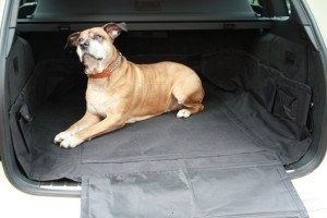 Hundedecke Kofferraum - HP Allround Kofferraumschutz mit Stoßstangenschoner