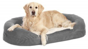 Karlie Hundebetten - Hundebett Ortho Bed Oval