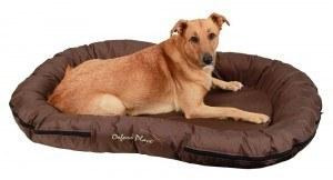 hundebett g nstige testsieger preisvergleich uvm. Black Bedroom Furniture Sets. Home Design Ideas