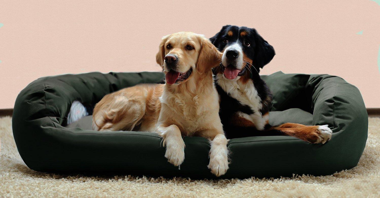 ares tierlando hundebett kaufen der online ratgeber. Black Bedroom Furniture Sets. Home Design Ideas
