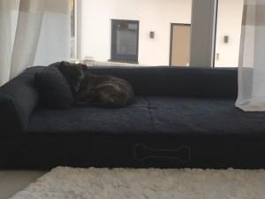 Hundebett Pallina kuschelig
